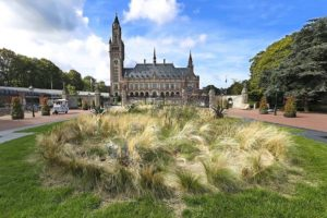 Guided Tour in Delft & The Hague