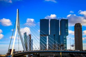Guided Tour Rotterdam
